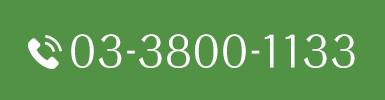 Tel.03-3800-1133